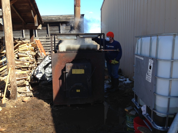 Sap collector on the right. Wood boiler center. Sap on top.